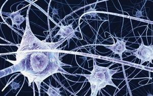 Neurones_mbsr_mbct